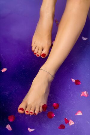 Attractive healthy gorgeous feet and legs with red nails, natural foot soak of lavender and plum extract, bathing pearls and flower petals in colourful violet water background, women luxury foot care