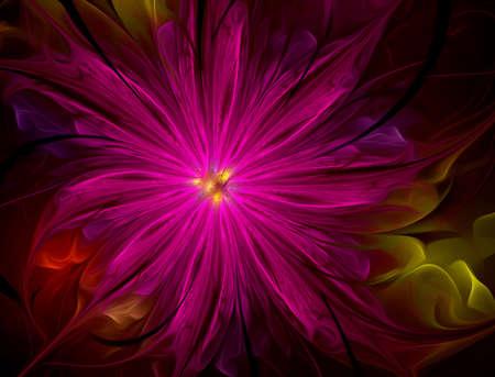 lovely flower Stock Photo - 19614008