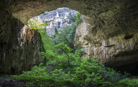 huge cave with holes abouve and forest inside