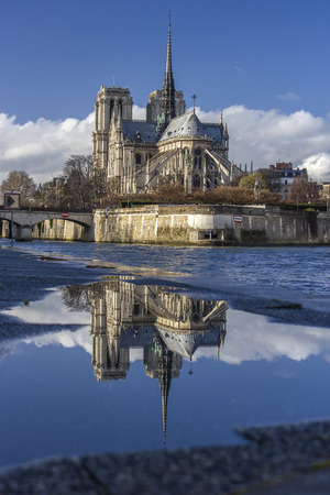 Notre Dame cathedral with water reflection, vertical