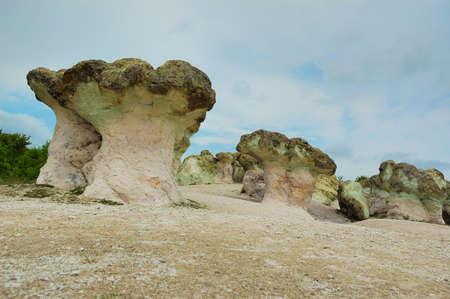 Stone mushrooms,Bulgaria