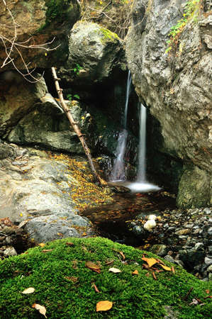 forest waterfall and rocks covered with moss Stock Photo