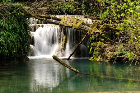 Beautiful river and waterfall in the forest photo