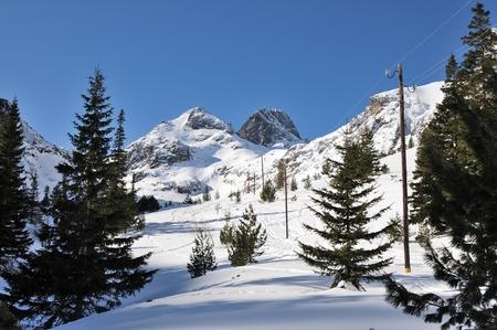 Peak Maliovica in winter, National park Rila