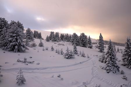 Magic view of Winter Park in luminous faded colors