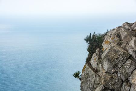 Gibraltar Upper Rock close up