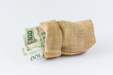 Polish money in a bag