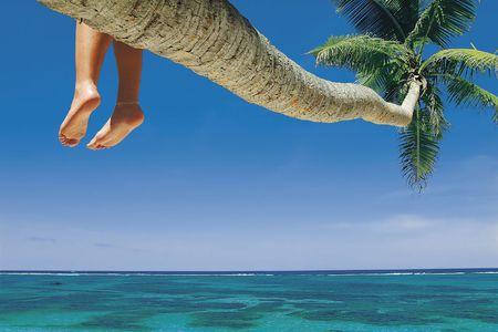 destination scenic: Beach, La Digue Island, Seychelles