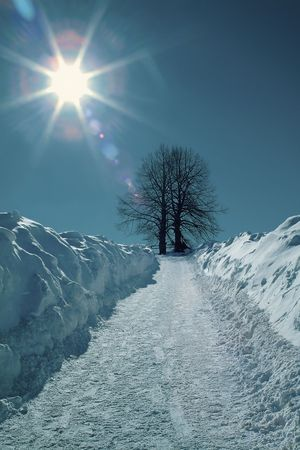 winter landscape Stock Photo - 1862575