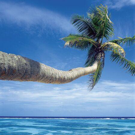 la: Insel La Digue, Seychellen Lizenzfreie Bilder