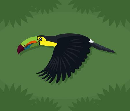 Toucan Illustration Cartoon Over Green Background Ilustrace