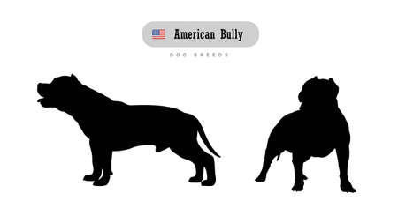 Dog breed American Bully. Side and front view silhouettes isolated on white background. Иллюстрация