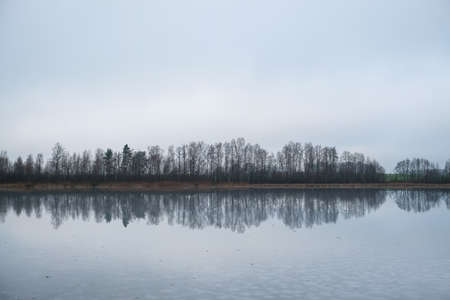 Picturesque winter landscape of frozen trees and reflection in the lake. Selective focus
