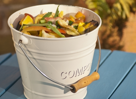 composting: Compost in a bucket