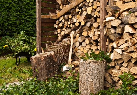 Log Store and Chopped Branches