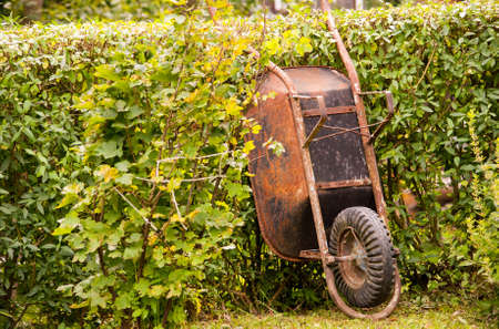 wheelbarrow: Rusty wheelbarrow Stock Photo