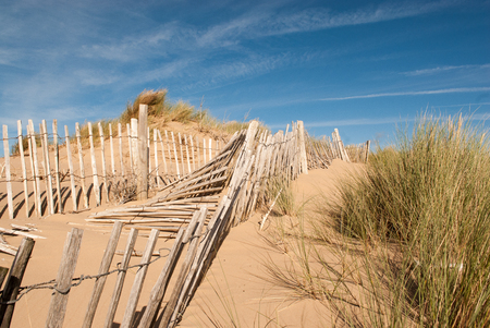 seascape image of three rows of broken fences leading up a sand dune