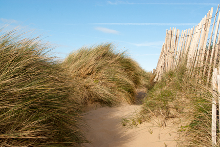 low down image of soft pale sand with long grass and old fence at Conwy Morfa Beach, Wales Standard-Bild