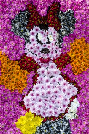 Minnie Mouse Flower Bed In The Botanical Garden Of Bucharest, Romania