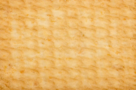 Macro Photo Of A Biscuit Texture Stock Photo - 18762629