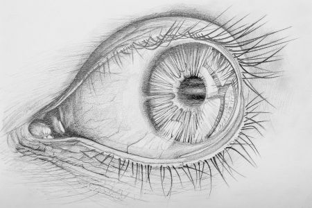 bocetos de personas: Anatom�a Pencil Drawn de un ojo humano Foto de archivo