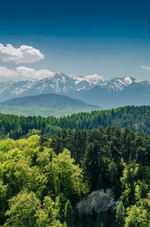 carpathian mountains: Carpathian Mountains Scenery Stock Photo