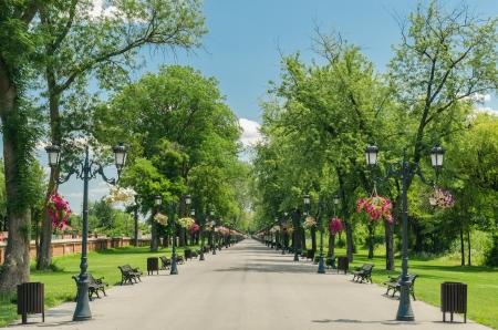 banc de parc: Mogosoaia publique all�e du parc � Bucarest, Roumanie Banque d'images