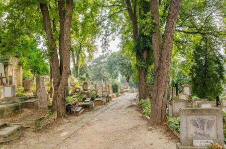 evangelical: Old Evangelical Cemetery In Sighisoara, Romania  Editorial