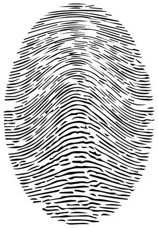 forensic: Detailed Forensic Fingerprint