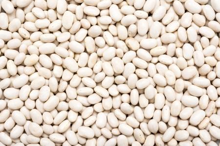 common bean: White Beans Stock Photo