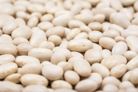 common bean: White Kidney Beans Close Up Stock Photo