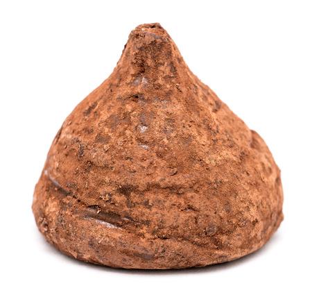 chocolate truffle: Chocolate Truffle On White