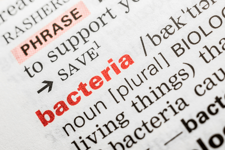 std: Bacteria Word Definition In Dictionary Close Up