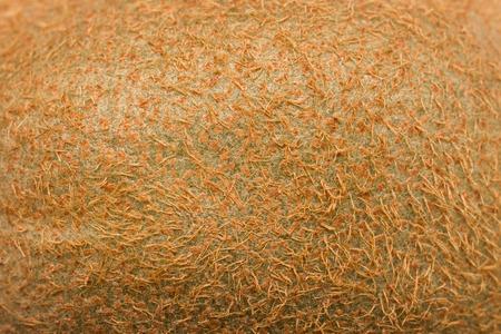 키위 과일 껍질 매크로 텍스처