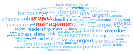 project management: Project Management Word Cloud Vector Illustration