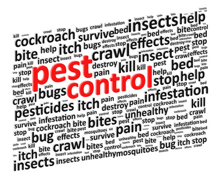 Pest Control For Bugs And Rodents Word Cloud Illustration Vector