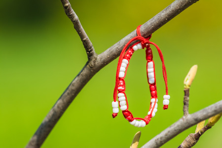 correlated: Red And White Martisor Decoration Hanging On A Tree. Martisor is an old Romanian celebration at the beginning of spring on March the 1st  Symbolically it is correlated to women and to fertility