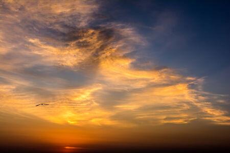 morning sky: Estate Alba Morning Sky