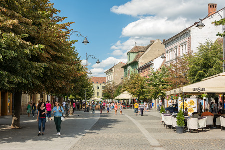SIBIU, ROMANIA - AUGUST 18, 2014: Nicolae Balcescu Avenue is located downtown in the historical center and is one of the most important streets of the city having most of the stores, banks and hotels.