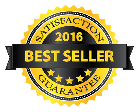 Best Seller 2016 Award Badge On White Vector