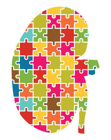renal failure: Kidney Jigsaw Puzzle Pieces Abstract