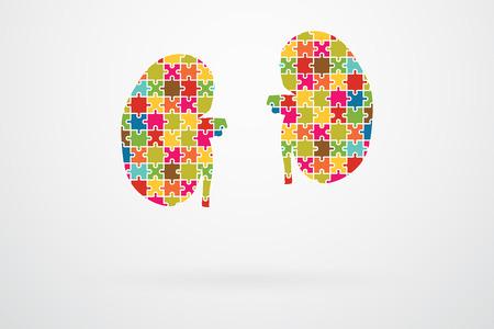 腎臓ジグソー パズル作品概要  イラスト・ベクター素材