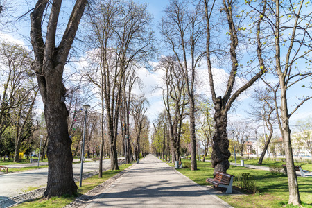 CLUJ NAPOCA, ROMANIA - APRIL 13, 2015: Central Park is a large public, urban park in central Cluj-Napoca and was founded in the 19th century and is located on the southern shore of Somesul Mic River.