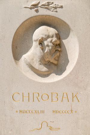 rudolf: VIENNA, AUSTRIA - AUGUST 03, 2015: Statue Of Rudolf Chrobak At University Of Vienna. He was an Austrian gynecologist who was a native of Opava, Austrian Silesia.