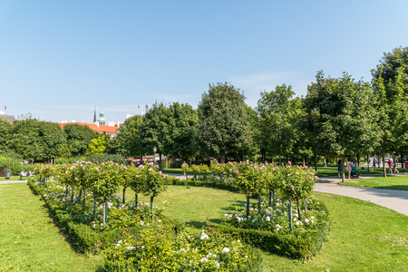 innere: VIENNA, AUSTRIA - AUGUST 06, 2015: The Volksgarten Peoples Garden is a public park which is part of the Hofburg Palace in the Innere Stadt district of Vienna and was opened to the public in 1823. Editorial