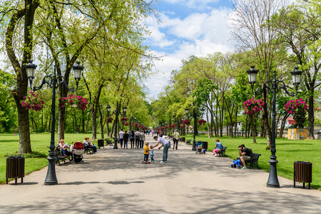 city park: BUCHAREST, ROMANIA - AUGUST 10, 2015: People Taking A Walk On Hot Summer Day In Mogosoaia Public Park.