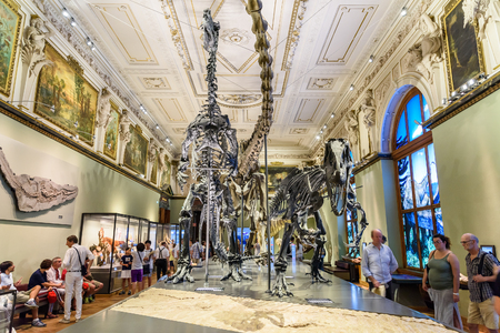 museum visit: VIENNA, AUSTRIA - AUGUST 09, 2015: People Visit Dinosaur Prehistoric Exhibit At The Museum of Natural History Naturhistorisches Museum The Largest Natural History Museum In Vienna. Editorial