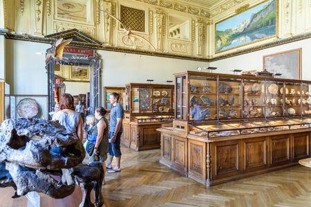 natural history museum: VIENNA, AUSTRIA - AUGUST 10, 2015: People Visit The Museum of Natural History Naturhistorisches Museum The Largest Natural History Museum In Vienna.