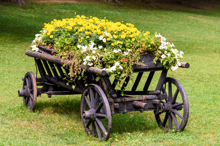 Flower Country Waggon On Green Grass