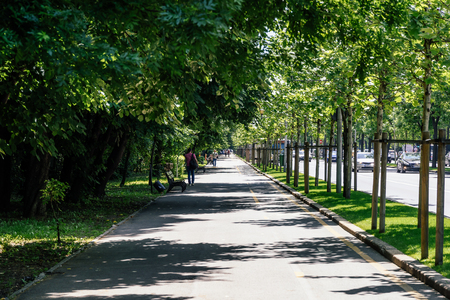 continuation: BUCHAREST, ROMANIA - MAY 24, 2017: Kiseleff Road is a major boulevard in Bucharest that runs as a northward continuation of Victory Street (Calea Victoriei).